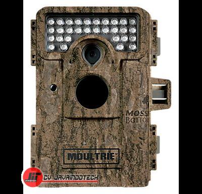 Review Spesifikasi dan Harga Jual Trail Camera Moultrie M-880 Infrared original termurah dan bergaransi resmi